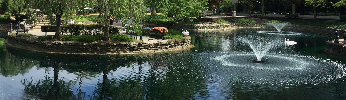 Elkins Park